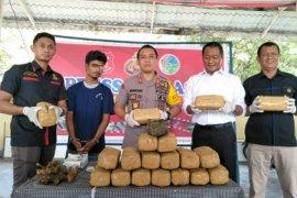 Polres Binjai ringkus pembawa 20 bal ganja tujuan Medan