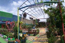 Kampung Anggur Tangerang bukti  warga aktif  menata lingkungan