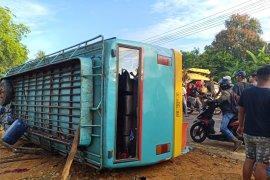 Belasan penumpang bus jurusan Pontianak-Sambas dilarikan ke rumah sakit