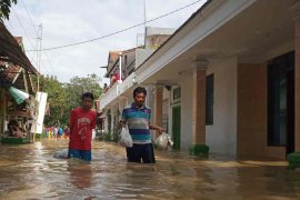 BPBD Indramayu: kerugian akibat banjir diperkirakan Rp4,1 miliar
