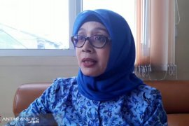 Empat warga Sukabumi meninggal akibat DBD