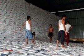 Persediaan beras Penajam cukup hingga Lebaran