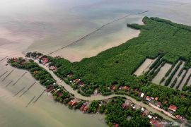 Kenaikan air laut ancam warga pesisir Jakarta, Semarang, dan Demak