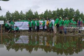 Menjaga Lingkungan Dengan 3.000 Pohon Mangrove
