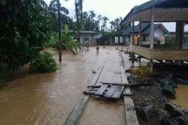 Aktivis minta Pemerintah Aceh serius pulihkan kerusakan hutan