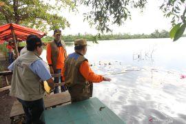 PUPR anggarkan Rp10 miliar untuk Danau Dendam Bengkulu