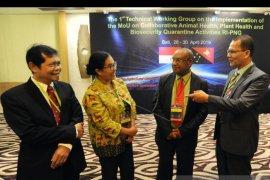 Barantan Indonesia-Papua Nugini perkuat akses pasar pertanian