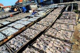 Produksi ikan kering meningkat