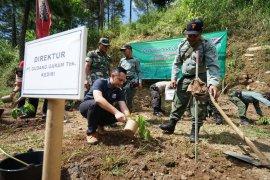 Ribuan bibit pohon ditanam di lereng Gunung Wilis wilayah Kabupaten Kediri