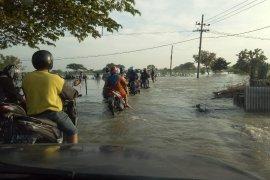 Banjir menggenangi empat Kecamatan di Gresik, akibat hujan lebat