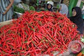 Harga cabai merah di Aceh Barat naik  100 persen