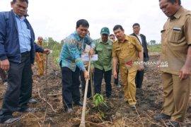 TPL tanam pohon kehidupan di Sipahutar