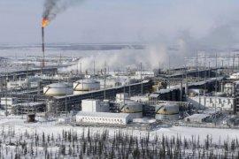 Harga minyak mentah naik dipicu pengurangan produksi Rusia