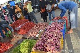 Pengamat nilai kebijakan ekspor bawang merah langkah keliru