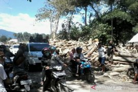 Banjir bandang di Sigi karena hutan sudah rusak?