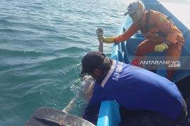 Tim SAR evakuasi korban tenggelam di Pantai Payangan Jember