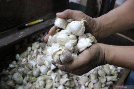 Disperindag : bawang putih impor masuk Ambon harga turun