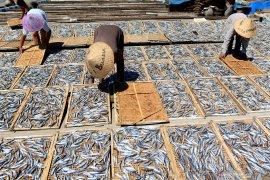 Produksi ikan asin menurun