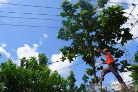 PLN Sanggau siagakan ratusan petugas amankan pasokan listrik