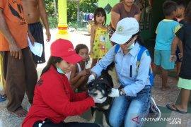Pemkab Landak berikan vaksin gratis untuk hewan peliharaan masyarakat