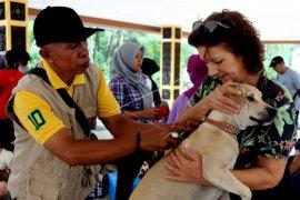 Pemeriksaan hewan penular rabies di Ambon