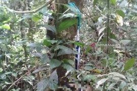 Penemuan mayat Ketua KPPS, Polisi: Diperkirakan gantung diri