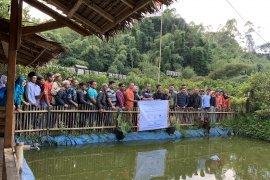 Petani muda Garut inisiatif bentuk koperasi kelola usaha wanatani di lahan Perhutani