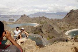 Pulau Komodo ditutup pada 2020