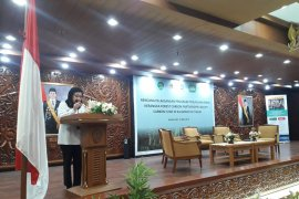 DDPI Diminta Gelar Seminar Tingkatkan Pemahaman Kepala Desa dan Kepala Adat