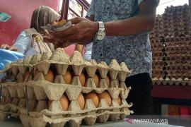 """IRT """"buru"""" telur  ayam ras di Pasar Tani Banda Aceh"""