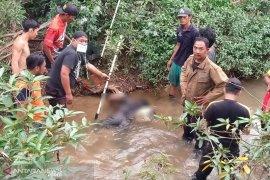 Warga Mukomuko temukan mayat tenggelam di sungai bersama alat sentruman ikan