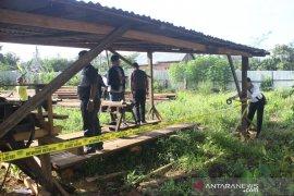 Mabes Polri amankan dua ribu kubik kayu  hasil pembalakan liar