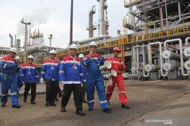 Pertamina RU II Dumai klaim tidak merugi meski sistem kelistrikan padam hampir 24 jam
