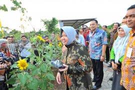 30 persen wilayah Surabaya dipenuhi taman