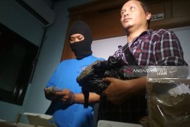 BNN Surabaya tangkap bandar ganja