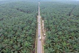 Jalur mudik Sumatera lintasi kawasan rawan kebakaran hutan