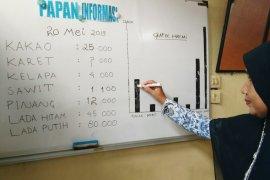 Harga komoditas kakao turun di  Aceh Utara