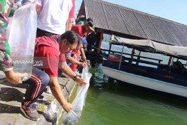 Lagi, Pemkab Bangli tabur 230.000 benih ikan di Danau Batur
