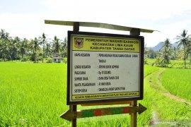 95 desa ajukan pencairan dana desa di Rejang Lebong
