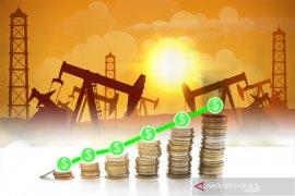 Ekspektasi penurunan produksi OPEC dorong harga minyak naik