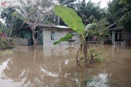 Tujuh wilayah di Kabupaten Penajam terendam banjir