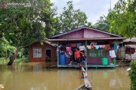 Puluhan rumah di Penajam masih terendam banjir