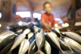 Perusahaan perikanan diminta pasok ikan ke pasar lokal di Malut