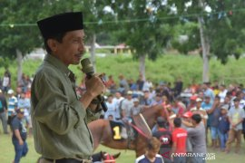 Semarak Pacuan Kuda dan Karapan Sapi di Gorontalo