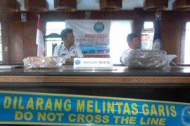 BNN Sulut terus dalami kasus ganja dua kilogram