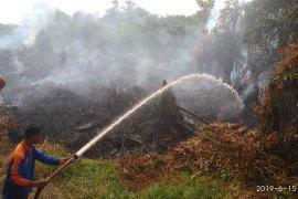 Lahan gambut  di salah satu desa Aceh Selatan terbakar