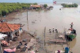 Abrasi paksa warga tinggalkan rumah di Muaragembong Bekasi