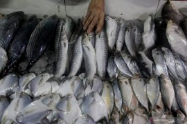 Pasokan ikan laut kurang