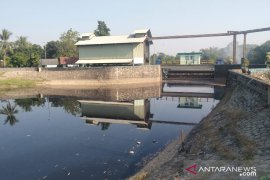 Bendungan Barugbug Karawang tercemar limbah industri