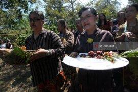 Manten kopi, Ritual jelang panen raya di Kebun Karanganjar Blitar